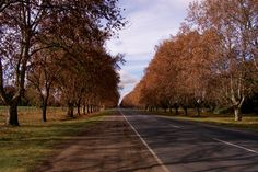 En el horizonte vemos a #SanAntonioDeAreco, a sólo 113 km de la Capital Federal. Hermosa ruta para una escapatoria #Porteña. ¿Conocés?  #Rutas #Turismo #Argentina #ViajesGuíasYPF #GuíasYPF #Viajes #YPF