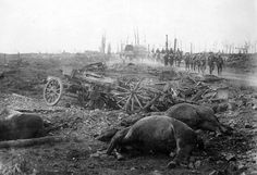 Dead horses and a broken cart on Menin Road, troops in the distance, Ypres sector, Belgium, in 1917. Horses meant power and agility, hauling weaponry, equipment, and personnel, and were targeted by enemy troops to weaken the other side -- or were captured to be put in use by a different army. (National Library of New Zealand)
