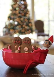 Elf on the Shelf Magic Cookie Seeds (red  green chocolate chips): plant in a bowl of sugar... sprinkle with a little salt each night... then in two days (or more if your not being good) Magic Cookies grow.    Also saw something similar with candy cane seeds.