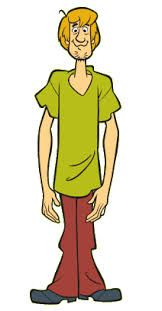 TIL the creators of the original Scooby-Doo show never meant for Shaggy to be perceived as a stoner. They were annoyed by the marijuana references in the live-action movie. Classic Cartoon Characters, Classic Cartoons, Disney Characters, Scoby Doo, Shaggy Y Scooby, Scooby Doo Images, Scooby Doo Mystery Incorporated, Shaggy Rogers, Saturday Morning Cartoons