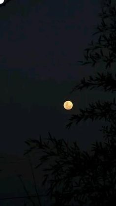 Night Aesthetic, Aesthetic Videos, Aesthetic Backgrounds, Aesthetic Pictures, Beautiful Nature Pictures, Beautiful Nature Scenes, Beautiful Moon, Night Sky Photos, Night Sky Wallpaper