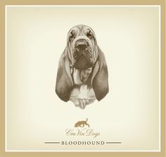 Cru Vin Dogs Bloodhound Chardonnay (2005), a Colorado Chardonnay by Cru Vin Dogs