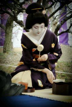 Geisha Performing Japanese Tea Ceremony