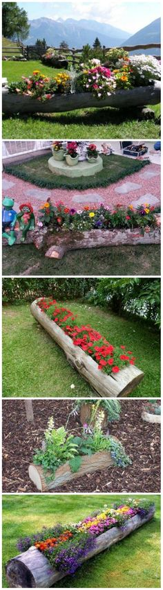 Hollowed Log Planter