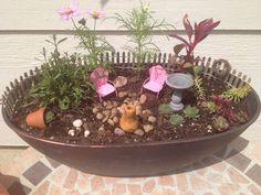 Mini garden. Mini Gardens, Miniature Gardens, Fairy Gardens, Mini Fairy Garden, Gnome Garden, Fairy Houses, Porch Ideas, Gnomes, Minis