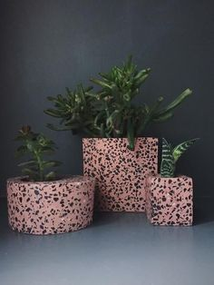 Very on trend planters for the cactuses - Pink & Black Terrazzo Succulent/Cacti Planters – Homeplace Design Trends 2018, Color Trends, Terrazzo, Pink Color Schemes, Ceramic Mosaic Tile, Design Palette, Style Lounge, Pink Marble, Diy Planters