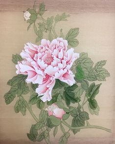Peony Painting, Watercolor Flowers, Watercolor Art, Korean Painting, Japanese Painting, Japanese Drawings, Japanese Art, Botanical Art, Botanical Illustration