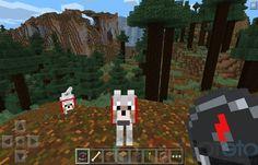 Rıdvan Sağlam Hayalrs Auf Pinterest - Minecraft spiele android