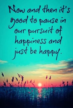 Now and then its good to pause in our pursuit of happines and just be happy