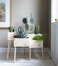 DIY: Blumenkasten aus Holz selber machen - Bild 13 - Cactus dans caisse de vin More More You are in the right place about cute office decor small Wooden Flower Boxes, Plantas Indoor, Deco Floral, Room Tiles, Cactus Y Suculentas, Home And Deco, Plant Decor, Cactus Decor, Cactus Art