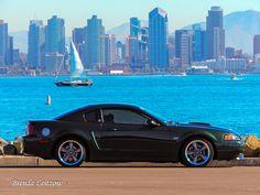 2001 Ford GT Bullitt - San Diego Skyline Sn95 Mustang, New Edge Mustang, San Diego Skyline, Ford Gt, Cars Motorcycles, Ford Mustangs, Jeeps, Vehicles, Trucks