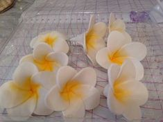 How to Make Tropical Flower Fondant Icing Flowers, Gum Paste Flowers, Fondant Flowers, Sugar Flowers, Fondant Tips, Fondant Icing, Fondant Recipes, Fondant Toppers, Frosting