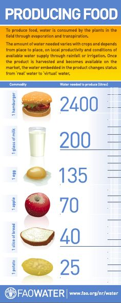 How much water does it take to produce food?