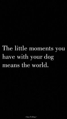 The little moments you have with your dog means the world - Dogs - Perros I Love Dogs, Cute Dogs, Diy Pet, Dogs And Puppies, Doggies, Dachshunds, Beagles, Baby Dogs, Thats The Way