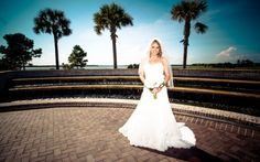 If you know what to look for in a Professional charleston photographers, you will be able to hire the right one for your wedding.