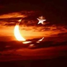 Bayrak Flag of Turkey More Pins Like This At FOSTERGINGER @ Pinterest