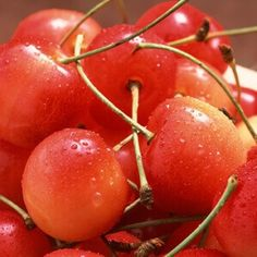 cherries & celery for gout