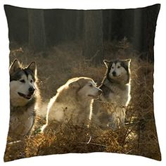 Huskies-Housse étui couverture Taie d'oreiller (18 Goop... https://www.amazon.fr/dp/B014PQWC5U/ref=cm_sw_r_pi_dp_cK9zxbJMR89DB