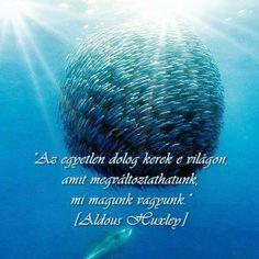 Aldous Huxley idézete a változásról. A kép forrása: Koczkáné Pamlényi Marika # Facebook