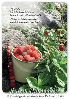 Strawberry, Strawberry Fruit, Strawberries, Strawberry Plant