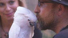 At Serenity Park Sanctuary in Los Angeles, neglected or abandoned birds forge connections with troubled humans