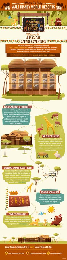 Disney's Animal Kingdom Lodge | Infographic #WaltDisneyWorld