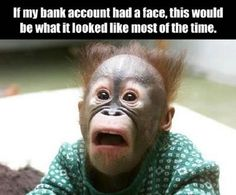 If My Bank Account Had A Face This would be what it looked like most of the time. Funny Pictures Funny Quotes Funny Memes
