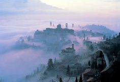 Bergamo with its own sub tropical micro climate early morning as the fog burns off with the morning sun