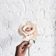 Looking forward to seeing what @1956blooms has planned for our Boston opening. Come see what we are all about this Thursday, Feb 18th  #AritziaBoston