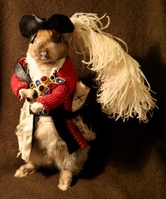 Pirate Rabbit flounces about after a long day of plunder.