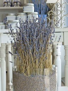 a lavender cottage . X ღɱɧღ Lavender Decor, Lavender Crafts, Lavender Cottage, Lavender Wreath, Lavender Blue, Lavender Fields, Drying Lavender, Lavender Bathroom, Lilac