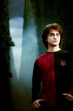 Harry Potter and The Goblet of Fire                                                                                                                                                                                 More