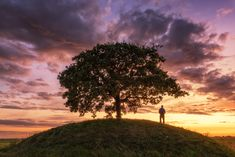 "Tree Of Light - Tree Of Light    <a href=""https://www.eyeofalens.com"">Website</a>  <a></a><a href=""https://www.facebook.com/EyeOfAlens"">Facebook EyeOfAlens</a> www.instagram.com/eamongeyeofalens"