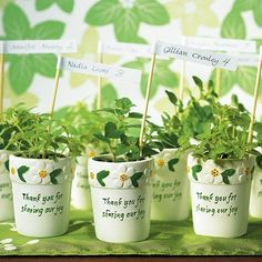 wedding flower pot favors - Shop on WeddingWire!