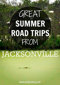 Great summer road trips from Florida