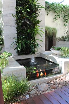 Small Fish Pond, Small Ponds, Koi Fish Pond, Garden Pond Design, Landscape Design, Contemporary Landscape, Contemporary Water Feature, Modern Garden Design, Indoor Pond
