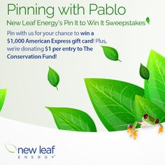 """As part of our Earth Day celebrations this month, we're giving you a unique chance to show your love for Planet Earth, Pinterest, AND New Leaf Energy with our """"Pinning with Pablo"""" contest!  For the 30 days of April 2014, you have the opportunity to win a $1,000 American Express gift card by sharing a few New Leaf Energy images to your personal Pinterest board.  Start pinning today!"""