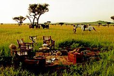 Awsome picnic in Serengeti National Park: Singita Sasakwa Lodge http://www.bms-travellers.nl/accommodation-367-singita-sasakwa-lodge.html