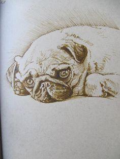 Camila by Luis Vargas Saavedra  Pen and ink
