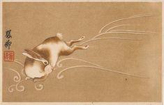 Rabbit 1915