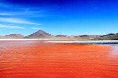La laguna colorada en Bolivie