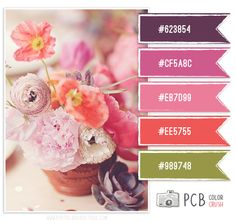 Great color templates Category : Color Crush Palette | Photographer Templates by Photo Card Boutique