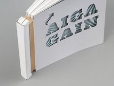 AIGA | GAIN by Jacob Hagen, via Behance