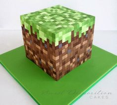 minecraft cake for Andrew's birthday!  I can't bake this.  or...anything, really.  but I CAN take this picture to a professional.