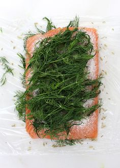 Easy Homemade Gravlax Mustard Salmon, Dill Weed, Fennel Seeds, Eating Raw, Seaweed Salad, Salmon Recipes, The Cure, Appetizers, Stuffed Peppers