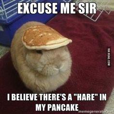 Excuse me sir...