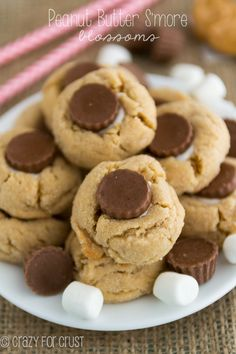 Peanut Butter S'more Blossoms - these are soft and super peanut Cookies Party Desserts, Cookie Desserts, Just Desserts, Cookie Recipes, Delicious Desserts, Dessert Recipes, Yummy Food, Yummy Cookies, Yummy Treats