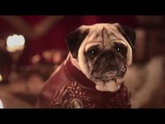 Game Of Thrones Pugs Edition - #GameOfThrones #pugs #funny #parody