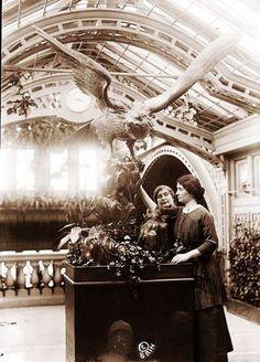 Melinda Cox Hall's Photo: Helen Keller #History | Lockerz