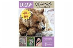 DRAW Wildlife book by Kathryn Hansen ~ x Graphite Drawings, Pencil Drawings, Brown Bear, Colored Pencils, Wildlife, Artwork, Artist, Books, Animals